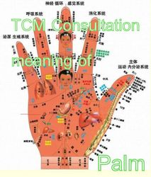 Palm consultation meaning